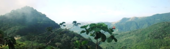 El Valle Panama Tour