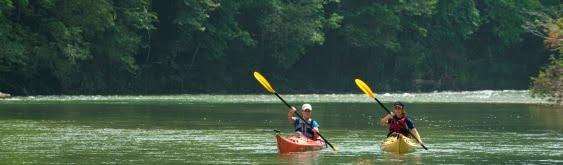Lake Gatun Jungle Boat Tour
