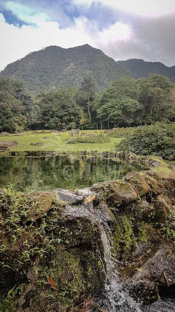peaceful-mountain-garden