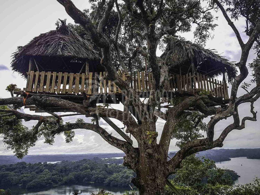 treehouse-at-panama-zipline-base